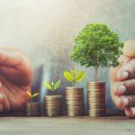 Solar Investment: Direkt in bestehende Solaranlagen investieren
